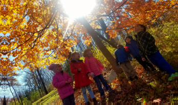 Group of Students standing under the autumn trees