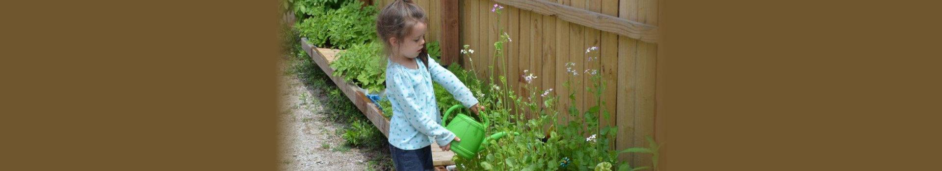 Toddler Girl watering plants in backyard