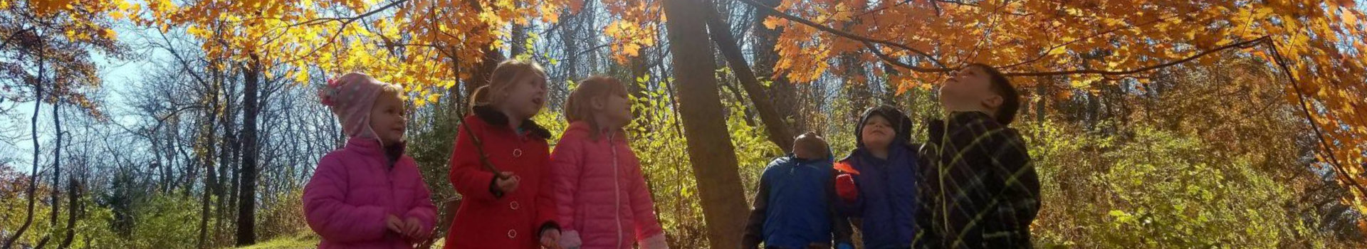 Group of children under automn trees